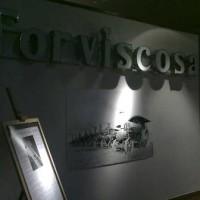 Torviscosa