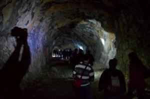 bunker opicina