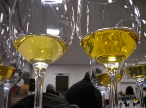 vino carso