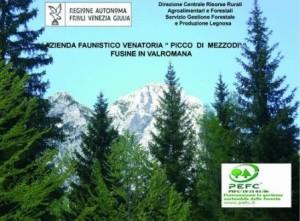 Picco_Mezzodi